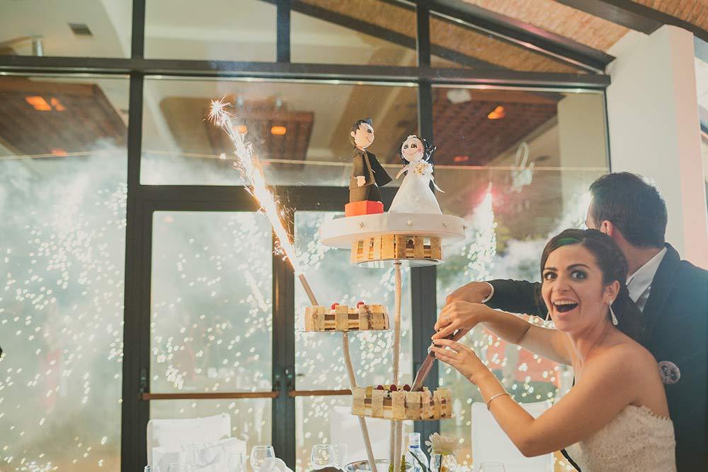Tu boda en los Chopos, galería de imagenes 9
