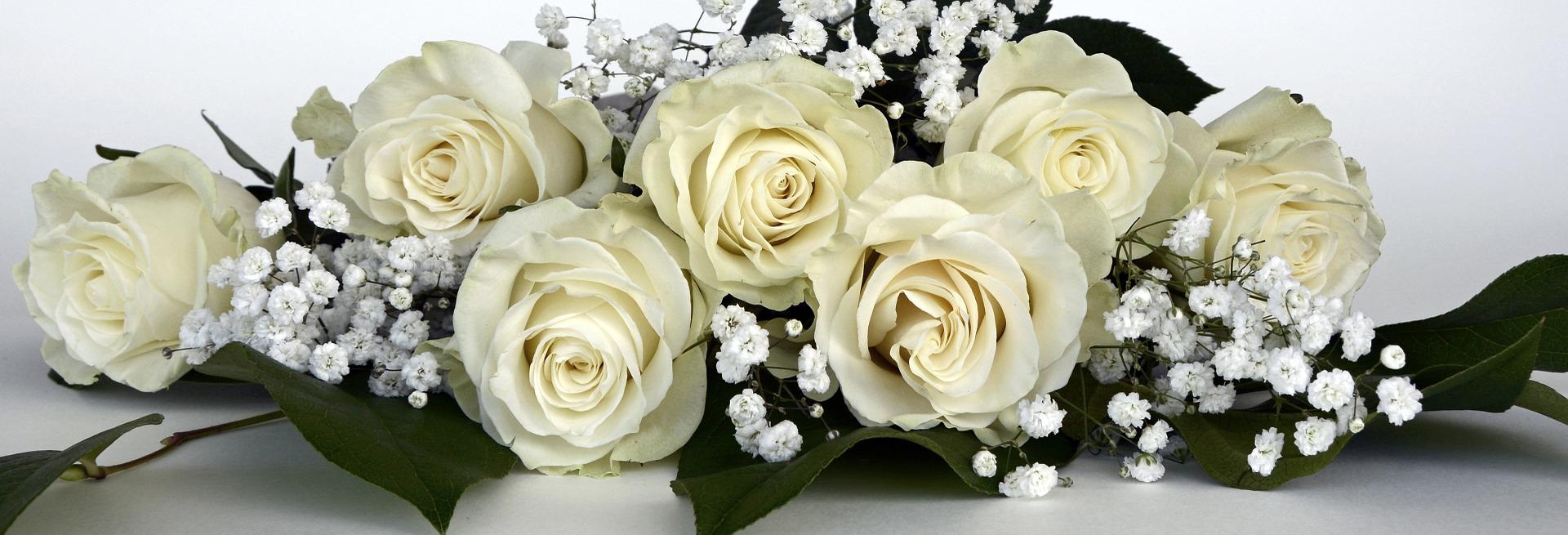 roses-1420725_1920