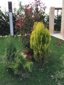 jardines de boda en albacete detalle