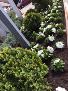 jardines de boda en albacete flores